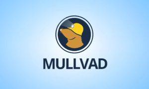 Mullvad VPN Review